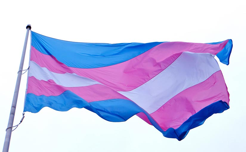 Transgender Pride flag, blowing in the wind.